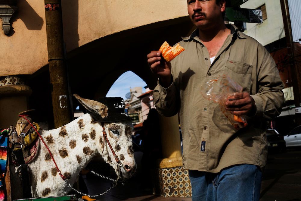 A man walks by a painted donkey in downtown Nogales.  Tourists pay $2 each to have their picture taken with the donkey.