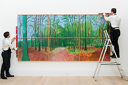 "© Licensed to London News Pictures. 30/09/2016. London, UK.  ""Woldgate Woods, 24, 25 and 26, 2006"" by David Hockney (est. USD9/12 million) is checked by technicians and on display in Sotheby's London ahead of its sale upcoming sale at Sotheby's New York in November. Photo credit : Stephen Chung/LNP"