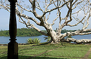 """LUNUGANGA the country home and & garden of Sri Lanka's most celebrated architect, Geoffrey Bawa...""""Lunuganga, Bentota, 1948-1997....The garden at Lunuganga sits astride two low hills on a promontory which juts out into a brackish lagoon lying off the estuary of the Bentota River.  In 1948, when Bawa first bought it, there was nothing here but an undistinguished bungalow surrounded by ten hectares of rubber plantation.  Since then hills have been moved, terraces have been cut, woods have been replanted and new vistas have been opened up, but the original bungalow still survives within its cocoon of added verandas, courtyards, and loggias."""" from geoffreybawa.com"""