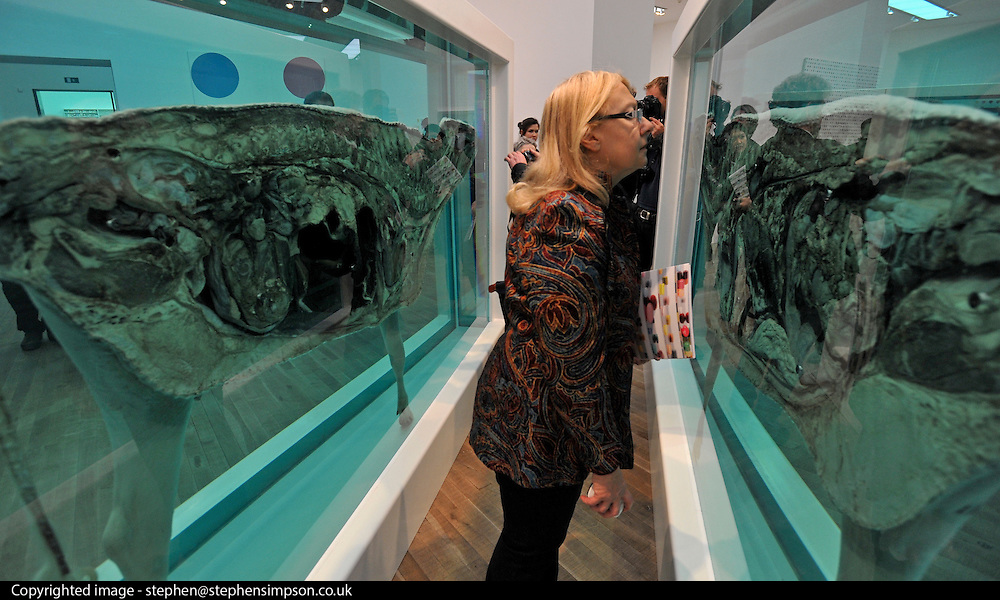 © Licensed to London News Pictures. 02/04/2012. London, UK People look at 'Mother and Child Divided' The Tate Modern presents the first substantial retrospective of British artist Damien Hirst. The exhibition runs 4th April - 9th September at Tate Modern London. Photographers Stephen Simpson/LNP