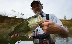 largemouth bass caught fly fishing with a streamer on crooked creek
