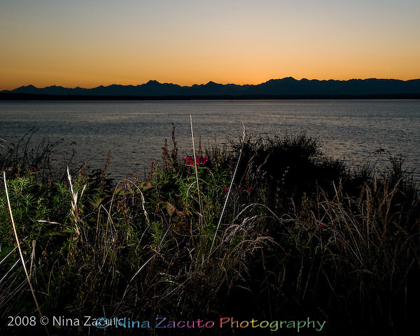 View of the Olympic Mountains from Seattle, WA at sunset.