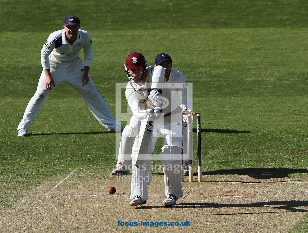 Lewis Gregory (front) of Somerset County Cricket Club bats during day 3 of the LV County Championship Div One match at the County Ground, Taunton, Taunton<br /> Picture by Tom Smith/Focus Images Ltd 07545141164<br /> 15/04/2014