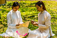 Vietnamese women wearing the traditional Ao Dai costume in the Imperial City, a walled palace within the citadel of the city of Huế which is the former imperial capital of Vietnam. Hue, Central Vietnam.