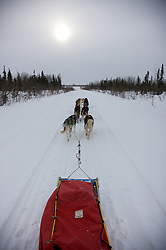 A dog sled team travels under the pale winter sun in the Arctic Circle.