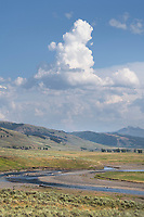 Lamar Valley Yellowstone National Park