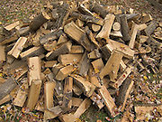 split firewood waiting to be stacked
