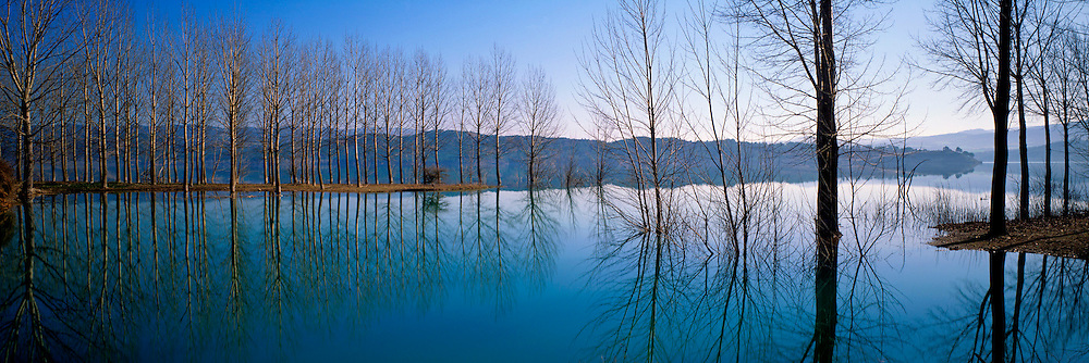SPAIN, NORTH, CATALUNYA reflections of trees in Lake Barasona near Graus, northeast of Huesca