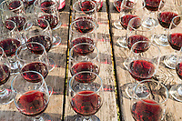 Churchill Cellars Pinot Noir Wine Tasting for Backroads Guests at Olema Campground, California