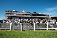 Scottish Sun Raceday at Ayr Racecourse