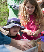 Samantha Cote (9) and her younger brother Michael (3) watch as Brett Taylor of the Holifield Science Learning Center catch a turtle as it tries to escape its box during EarthFest 2013 at the Connemara Meadow Preserve in Allen on Saturday, April 6, 2013. (Cooper Neill/The Dallas Morning News)