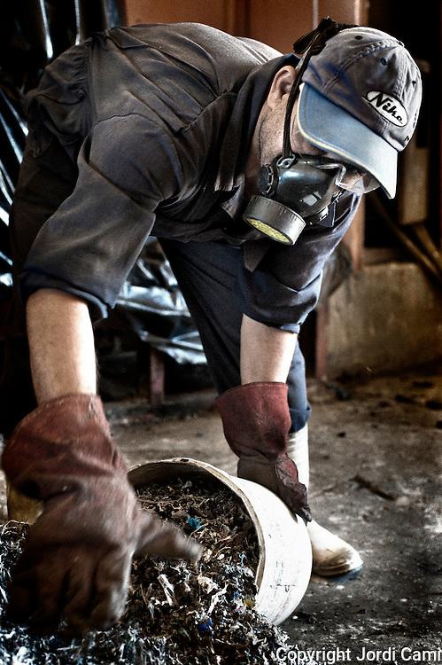 """Un trabajador """"Zabbaleen"""" recoge los residuos de plástico de una de las máquinas de triturar de la planta de reciclaje de Katameya, que dirige la ONG A.P.E. en las afueras del Cairo. En medio del barrio de Manshiet Nasr a las afueras de El Cairo esta situado el asentamiento de Mokattam conocido como la """"Ciudad de la Basura"""" , está habitado por los Zabbaleen ,una comunidad de unos 45.000 cristianos coptos que viven desde hace varias décadas de reciclar los desperdicios que genera la capital egipcia: plástico, aluminio, papel y desechos órganicos que transforman en compost . La mayoría forman parte de la Asociación para la Protección del Ambiente (APE) una ONG que actúa en el área, cuyos objetivos son proteger el medio ambiente y aumentar el sustento de las recuperadores de basura de El Cairo. Según la ONU, el trabajo que se realiza en Mokattam como uno de los diez mejores ejemplos del mundo en el mejoramiento medioambiental. El Cairo , Egipto, Junio 2011. ( Foto : Jordi Camí )"""
