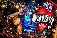 L'universo fantastico di Valentine, tra Elvis e le fiabe.<br /> <br /> Valentine, artista e proprietaria di un locale, appassionata di anni 50 e 60, vive nel mito di Elvis Prisley.