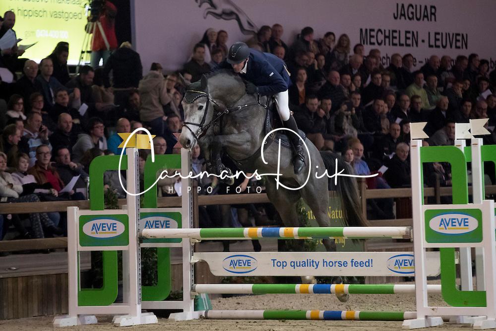 Van Dijck Joris, BEL, Comme D Hab j&f Champblanc<br /> Pavo Hengstencompetitie <br /> BWP Hengsstenkeuring - Azelhof 2017<br /> © Dirk Caremans