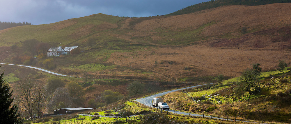 Saloon car transporting livestock by towing trailer through the Brecon Beacons in Wales, UK