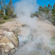 Dragon's Mouth at Mud Volcano Geyser Basin in Yellowstone National Park, Wyoming.  This geyser gets it's name from the spooky growls and burps that come from the sulfurous cave. Photo by William Byrne Drumm.