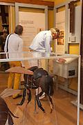 Deutsches Bienenmuseum, Weimar, Thüringen, Deutschland | German Bee Museum, Weimar, Thuringia, Germany