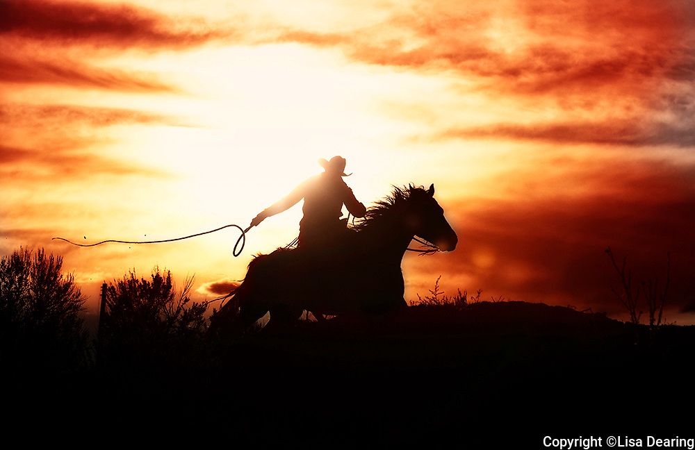 Cowboy Cracking Stock Whip at Sunset