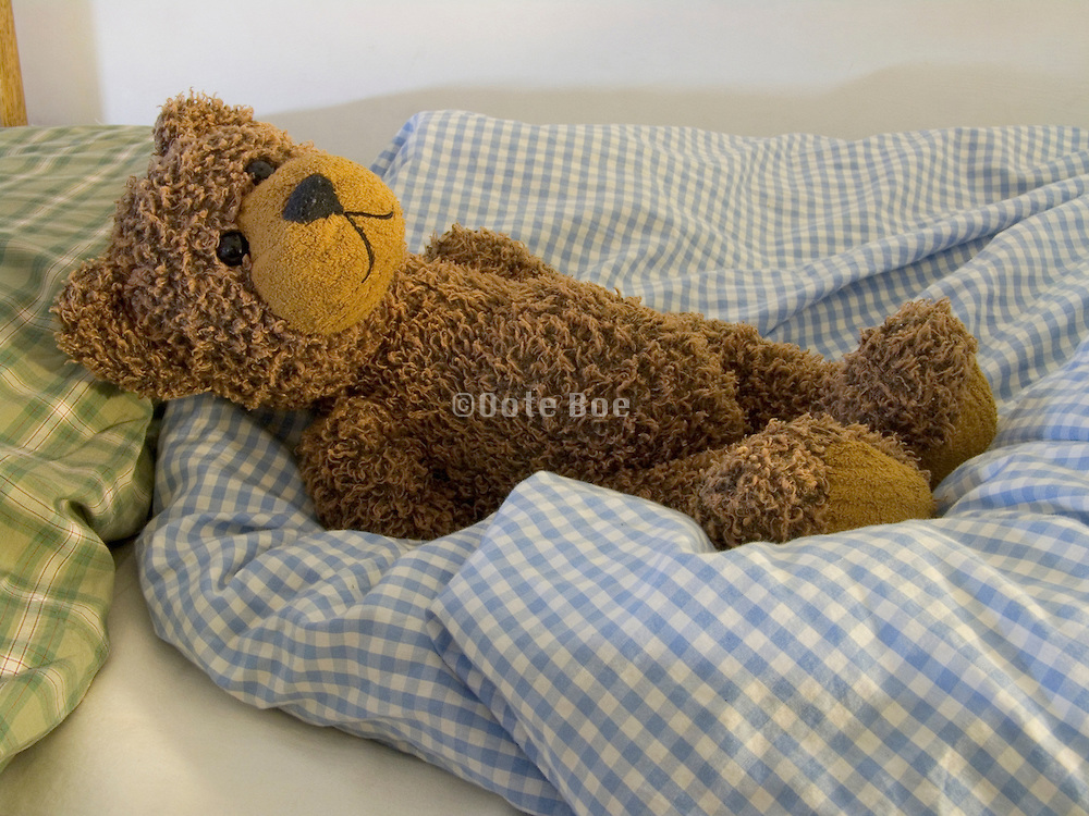 Teddy bear sleeping