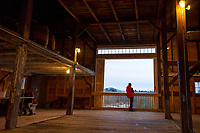 A young lad looks out at the sunset Saturday afternoon from Prescott Farm Environmental Center's barn during their Winter Solstice celebration.  (Karen Bobotas/for the Laconia Daily Sun)