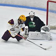 2-14-17 Chicopee vs Greenfield Hockey / Senior Night