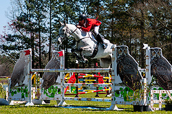 March 22, 2019 - Raeford, North Carolina, US - March 22, 2019 - Raeford, N.C., USA - FELIX VOGG of Switzerland riding COLERO competes in the show jumping CCI-4S division at the sixth annual Cloud 11-Gavilan North LLC Carolina International CCI and Horse Trial, at Carolina Horse Park. The Carolina International CCI and Horse Trial is one of North AmericaÃ•s premier eventing competitions for national and international eventing combinations, hosting International competition at the CCI2*-S through CCI4*-S levels and National levels of Training through Advanced. (Credit Image: © Timothy L. Hale/ZUMA Wire)