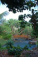 Hapuna beaches, Hawaii - pond scene with wooden bridge