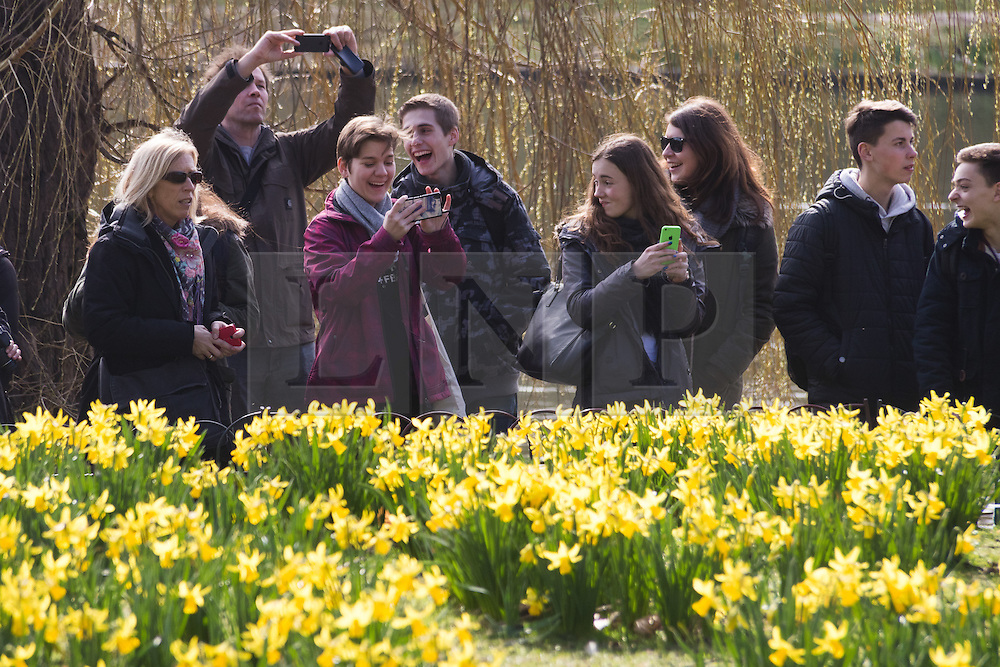© Licensed to London News Pictures. 10/03/2015. London, UK. People enjoying the sunny spring weather in St James's Park in London today. Photo credit : Vickie Flores/LNP
