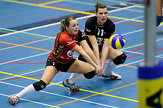 2011 volleybal