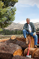 Man sitting on chopped tree trunk