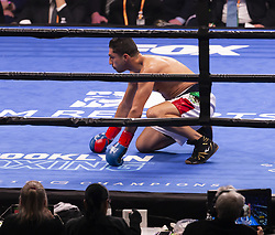 January 26, 2019 - New York, New York, United States - Keith Thurman retains WBA World Championship title winning against challenger Josesito Lopez sending him into knockdown at Barclays Center (Credit Image: © Lev Radin/Pacific Press via ZUMA Wire)