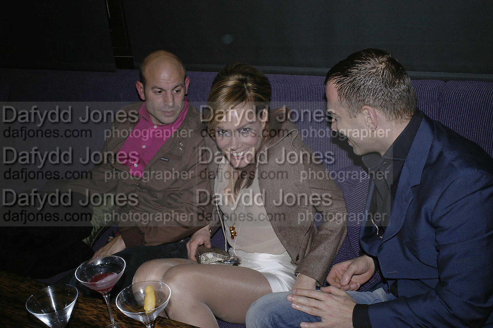 TARA PALMER-TOMPKINSON , THREE'S A CROWD EVENTS LAUNCHES, THE MAYFAIR HOTEL BAR, STATTON ST. LONDON.<br />5 December 2006. ONE TIME USE ONLY - DO NOT ARCHIVE  &copy; Copyright Photograph by Dafydd Jones 248 CLAPHAM PARK RD. LONDON SW90PZ.  Tel 020 7733 0108 www.dafjones.com