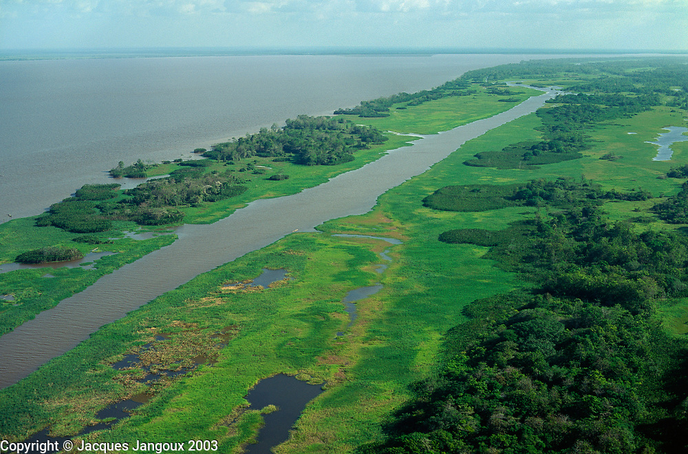 Aerial view of lower Amazon floodplain with uncovered grasslands at low water level during dry season, Para,  Brazil.