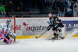 18.11.2018, Ice Rink, Znojmo, CZE, EBEL, HC Orli Znojmo vs EHC Liwest Black Wings Linz, 20. Runde, im Bild v.l. Michael Ouzas (EHC Liwest Black Wings Linz) C.J. Stretch (HC Orli Znojmo) // during the Erste Bank Eishockey League 20th round match between HC Orli Znojmo and EHC Liwest Black Wings Linz at the Ice Rink in Znojmo, Czechia on 2018/11/18. EXPA Pictures © 2018, PhotoCredit: EXPA/ Rostislav Pfeffer