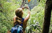 A woman taking a picture of Hanakapi'ai Falls in the Hanakapi'ai Valley on the Na Pali Coast of Kauai, Hawaii.