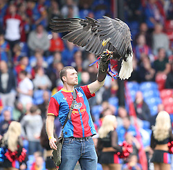 An Eagle lands at Selhurst Park - Photo mandatory by-line: Robin White/JMP - Tel: Mobile: 07966 386802 22/09/2013 - SPORT - FOOTBALL - Selhurst Park - London - Crystal Palace V Swansea City - Barclays Premier League