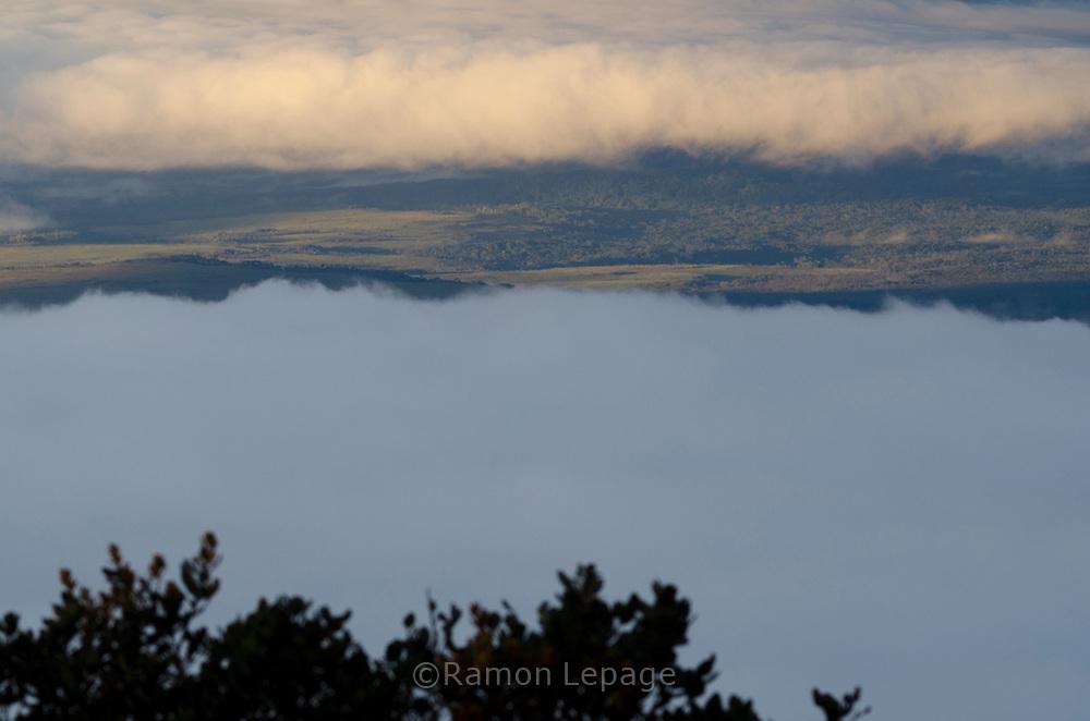 """AUYANTEPUY, VENEZUELA. Vista del valle de Uruyen. El Auyantepuy es el mayor de los tepuis del Parque Nacional Canaima. En sus 700 kms2 alberga el salto angel o conocido por lengua indígena Pemon como """"Kerepacupai Vena; es la caída de agua más grande del mundo con sus 979 metros de altura. (Ramon lepage /Orinoquiaphoto/LatinContent/Getty Images)"""