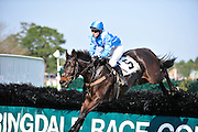 27 March 2010 :Danielle Hodson and MAKE BELIEVE look stylish over the last hurdle in the Sport of Queens Maiden Hurdle race.