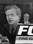 Fine Gael 63rd Ard Fheis..1986..12.10.1986..10.12.1986..12th October 1986..The 63rd Fine Gael Ard Fheis was held in the R.D.S.Dublin. An Taoiseach, Garret Fitzgerald, gave the leaders' oration to the assembled Fine Gael ranks..Dwarfed by his giant poster,An Taoiseach,Dr Garret Fitzgerald delivers his leaders' speech to the massed ranks of the Fine Gael faithful.