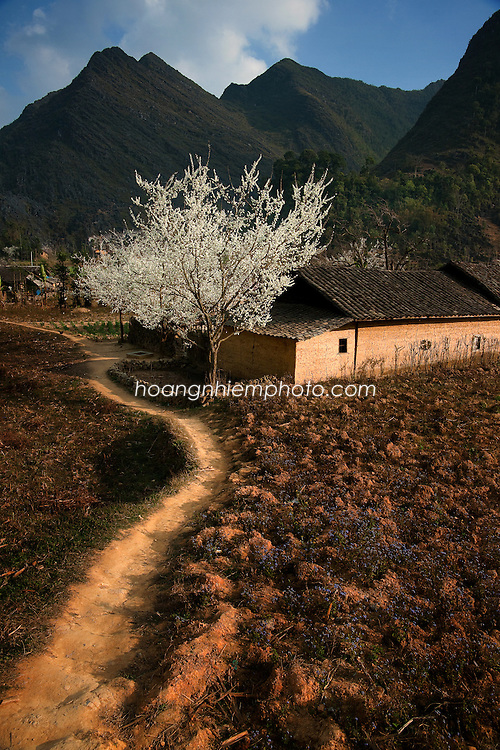 Vietnam Images-landscape-Ha Giang phong cảnh việt nam