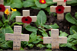 © under licence to London News Pictures 14/11/2010. Remembrance service at Lincoln Cathedral today (Sun) to pay respects to all who those who lost their lives in current and past conflicts, including the First and Second World Wars.Pictured Word War One Poppies at the memorial... Photo Credit should read: Dave Warren/ London News Pictures
