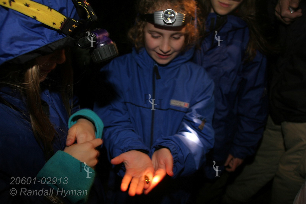 Ecoteach participants admire glowing firefly during night hike in cloud forest of Monteverde, Costa Rica.