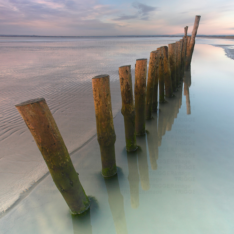 Wooden posts in the sea at West Wittering, Sussex, England.