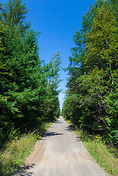 The International Appalachian Trail follows this multi-use rail trail in Monticello, Maine.
