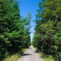 The International Appalachian Trail follows this multi-use rail trail in Monticello, Maine.