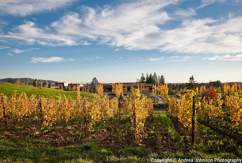 The Allison - Oregon Wine Country's Premier Inn & Spa, Willamette Valley, Oregon