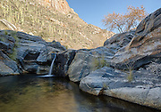 Bear Creek flows through the Santa Catalina mountains of southern Arizona, creating a desert oasis sustaining vegetation not normally seen in this environment.
