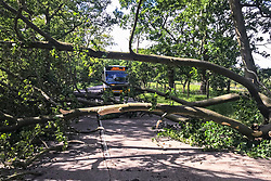 Pictured:  A large tree blocks the A706 Linlithgow to Bathgate road early today after being blown down during gale force winds brought in by Storm Hector. The tree narrowly missed the No 31 bus running from Bathgate to Linlithgow. <br /> Andrew West/ EEm