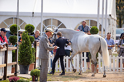 Lips Tim, NED, Bayro NOP<br /> European Championship Eventing<br /> Luhmuhlen 2019<br /> © Hippo Foto - Stefan Lafrentz