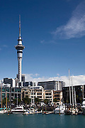 Auckland harbour, Sky Tower, 1,082 feet,Viaduct Basin boats docked,tall buildings,downtown, Auckland, New Zealand